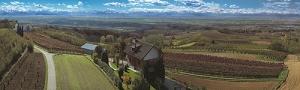 bruno giacoso vineyards