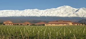 Photo courtesy of Finca Decero vineyards.