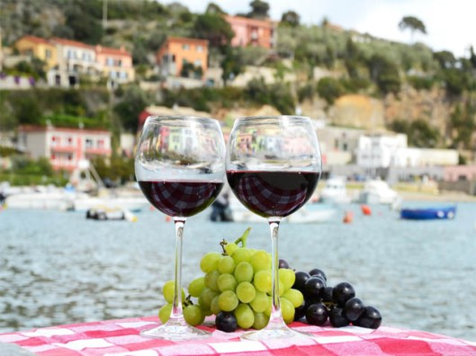 pair-of-wineglasses-and-grapes-against-the-harbour-of-portvenere