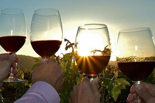 courtesy_napa_valley_wine_wave