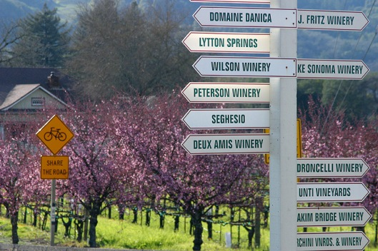 sonoma-vintners-sign