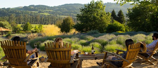 best-wines-in-napa