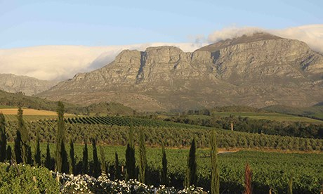 Cape wine route, South Africa