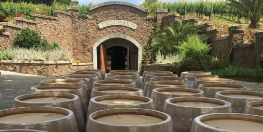 Truchard-Winery-1